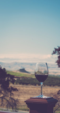 glass of wine with rolling landscape in the background